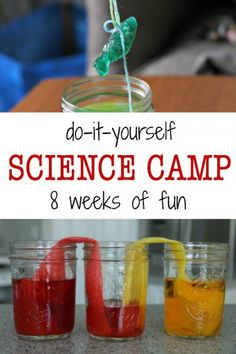 DIY summer science camp for kids. Lots of cool science activities.