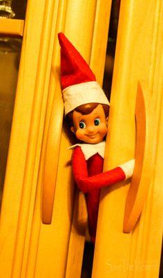 Unser Elf on the shelf Elf On The Shelf, Elf Auf Dem Regal, Holiday Ideas, Holiday Decor, Shelves, Home Decor, Pranks, Christmas, Shelving