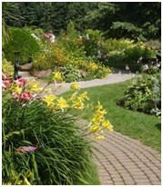 How to Plan and Create a Landscape Design: Free Guides, Project Plans, Software and Ideas
