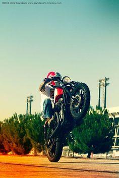 Wheelie! #hd #sportster