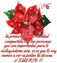 Christmas Wreaths, Christmas Ornaments, Good Morning Quotes, Happy New Year, Holiday Decor, Messages, Flower, Merry Christmas Gif, Funny Christmas