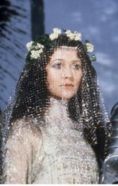 Delicious sparkly veil from the film Excalibur.