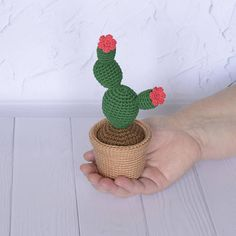 Crochet cactus Amigurumi cactus Knit cacti in pot Stuffed