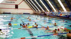 La Alberca Olímpica, tiene abiertas inscripciones para sus cursos diarios ~ Ags Sports