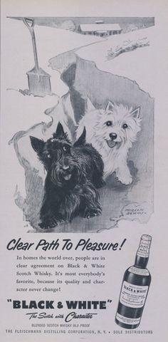 1957 Black & White Scotch Whisky Ad Scottish by AdVintageCom