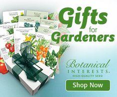 60 Herbal Plants to Grow for Homemade Tea   Empress of Dirt Garden Pond, Garden Art, Overwintering Geraniums, Growing Ginger, Avocado Plant, Dome Greenhouse, Growing Dahlias, Cactus Care, Garden Mirrors