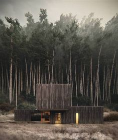 Describe this home in ONE word! The Black Timber House is designed by Studio Puisto Architects + Bas van Bolderen Architectuur and is located in // Visuals by Maria Glyzdakova Architecture Visualization, Landscape Architecture, Interior Architecture, Interior And Exterior, Rustic Exterior, Interior Design, Room Interior, Exterior Rendering, Japanese Architecture