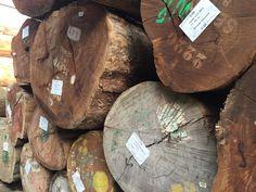 Ronde hardhouten stammen uit Afrika, Azie en Zuid Amerika Firewood, Texture, Crafts, Africa, Surface Finish, Woodburning, Manualidades, Handmade Crafts, Diy Crafts