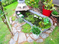 Vintage tin bath pond