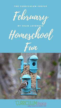 Make heartwarming memories during the cool days of February with some of the wacky, but real, holiday ideas below or create unique ones that are just right for your family. Share the love all month long with these February homeschool fun ideas.