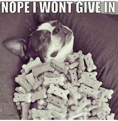 hahah wish I had that self control! diet motivation