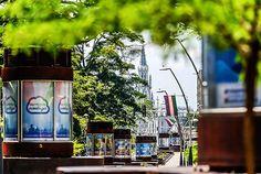 Bulevar del Río, el espacio que le cambio la cara a #Cali #PorCaliLoHagoBien #MiCaliSoñada Times Square, Travel, Walks, Parks, Space, Viajes, Destinations, Traveling, Trips