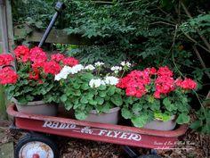 Red Wagon ~ Container Gardens http://ourfairfieldhomeandgarden.com/container-gardens-our-fairfield-home-garden/