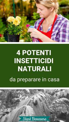 #insetticidi #giardinaggio #startbenessere