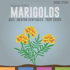 Marigolds (short story)