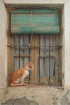"""Antonio Guzman Capel Antonio Guzman Capel is a Spanish photo-realistic artist born in He is a """"self-taught"""" artist who. Crazy Cat Lady, Crazy Cats, Cute Cats, I Love Cats, Cat Window, Window Ledge, Window Sill, Orange Cats, Tier Fotos"""