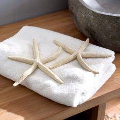Seesterne Starfish #loberon