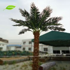 APM042 GNW Fake Palm Tree for Sale 12ft High for wedding decoration outdoor use