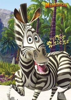 Maximus Horse Marty Zebra Related Keywords & Suggestions - Maximus
