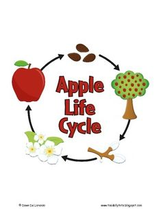 Life Cycles Puzzles and Posters {9 LIFE CYCLES!} by TeachingResourceResort | Teachers Pay Teachers Pete The Cats, Flannel Friday, Flannel Boards, Sequencing Activities, Author Studies, Art Lessons Elementary, Hungry Caterpillar, Life Cycles, Teacher Newsletter