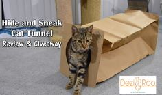 Hide and Sneak Cat Tunnel Review & Giveaway