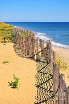 Cape Cod National Seashore Ocean Beach - Eastham, MA - USA