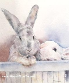 This bunny watercolor is available as a cute art print and greeting cards.  Perfect for the bunny art nursery and for anyone who loves bunnies for decor!  To view more animal art by Teresa Silvestri, visit www.SilvestriStudios.com  (Photo reference thanks to Tulip Nix)