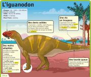 L'iguanodon - Le Petit Quotidien, le seul site d'information quotidienne pour les 6 - 10 ans !