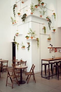 Potted plants and wood tables.