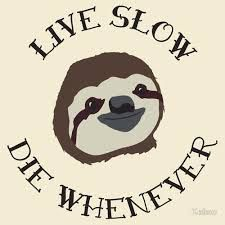Image result for dudeism