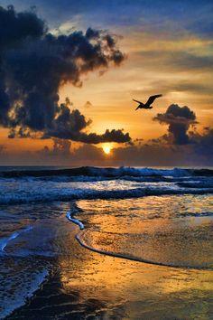 I miss sundown walks on the beach