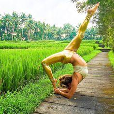 Enter to Win a Yoga Teacher Training  Scholarship, Choose from Hawaii, Costa Rica or Bali!