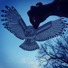 Papercut Owl - beautiful detailed OWL cut from pearl white paper