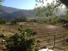 Farms for sale in Montagu - 3 bedroom 13373691 | 8-18