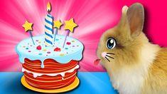ДЕНЬ РОЖДЕНИЯ КРОЛИКА БАФФИ! КОТ МАЛЫШ и КОШКА МУРКА ДАРЯТ КРУТОЙ ПОДАРОК! ВЕСЕЛЫЕ ИГРЫ ДЛЯ ЖИВОТНЫХ! Подарки на день рождения для Кролика Баффи от все дружной семьи Анука Давайка. Сегодня мы покажем в новом видео как мы отметили день Рождения Бафи. Анюта приготовила очень вкусный торт для кролик из всего самого вкусного и полезного! Поздравления начались с самого утра и мы показали Утро именинницы а так же поиграли в веселые игры с животными и все это в один чудесный день! Если вы не…