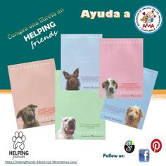 BUY AND HELP AMA (http://www.amigosdelosanimales.org.gt/), a Guatemalan organization focused on rescuing abandoned or mistreated dogs and cats who need medical attention and/or relocation in a good home. Available in the online store HELPING FRIENDS:  https://helpingfriends-3dcart-net.3dcartstores.com/