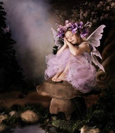Whimsical Fairy photos of your child. A fairy photo session is a fun time for your little girl. You will have a beautiful work of art that you and your child will treasure for a lifetime. fairy, fairies, fairy pictures, photos of fairies. Baby Fairy, Love Fairy, Fairy Photoshoot, Fairy Photography, Fairies Photos, Kobold, Fairy Pictures, Foto Baby, Beautiful Fairies