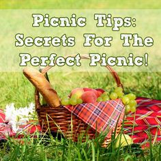 Picnics are one of my favorite things about summertime — both spur-of-the-moment sandwiches on the lawn, and well-planned out feasts. What's not to love about sitting out in nature, enjoying some company and a plate full of delicious food? 1 Day Trip, Going Away Parties, Picnic Date, Vintage Picnic, Year Of Dates, Work Party, Easy Cooking, Family Activities, Great Recipes