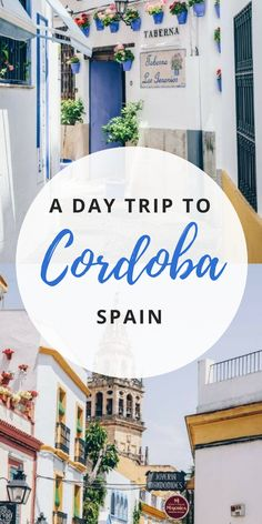 Don't miss out on exploring Cordoba in Andalusia, Spain! From food to architecture to the famous Mezquita, here are all the things to do in just a day trip! #cordobaspain #thingstodoincordoba #cordoba