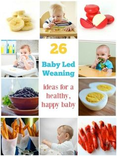 Good ideas for parts of meals or snacks - 26 Baby led weaning foods for a healthy, happy baby Fingerfood Baby, 5 Month Old Baby, Baby Weaning, Weaning Baby From Breastfeeding, Baby Led Weaning First Foods, Healthy Baby Food, Happy Healthy, Baby Snacks, Newborn Baby Care