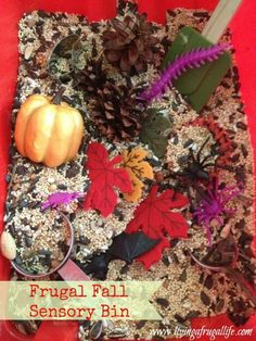 Make a fall sensory bin filled with lots of fall themed items from the dollar store. Cheap and effective way to teach children through their senses!