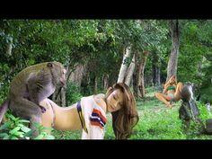 cómo criar el mono con chica - reunión de grupo de mono con la hermosa niña en español - YouTube