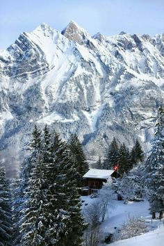 Live in the mountains during winter