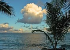Blissful Big Island Yoga Adventure Retreat at Pāhoa Hawaii United States