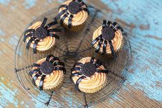 cupcakes with oreo spider bodies and liquorice legs