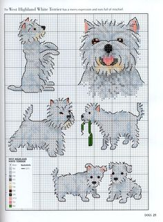 Cross stitch these West Highland White Terrier puppies and dogs. Use color chart given at bottom of chart or use your own imagination.Enjoy..they're adorable.
