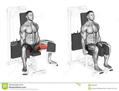 Exercising. Reduction Feet On Simulator For Adductors Stock Illustration - Image: 56988382