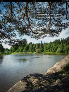 Have a picnic at Pikkukoski - peaceful, close to nature and a great viewbfrom the cliff! Closer To Nature, Helsinki, Cliff, Picnic, Tasty, Peace, River, Dreams, Outdoor