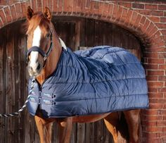 Horse Rug Liners: 100, 200 & 350g