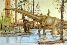Great Dinosaur website for kids